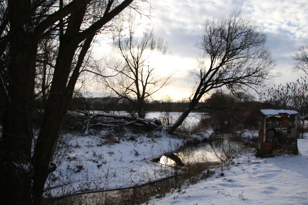 Winter 2016-17